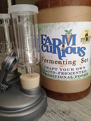Mason Jar Fermenting Set